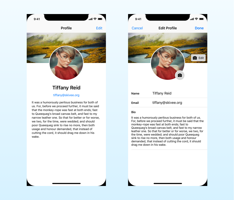 mockup of an example app using a swift singleton