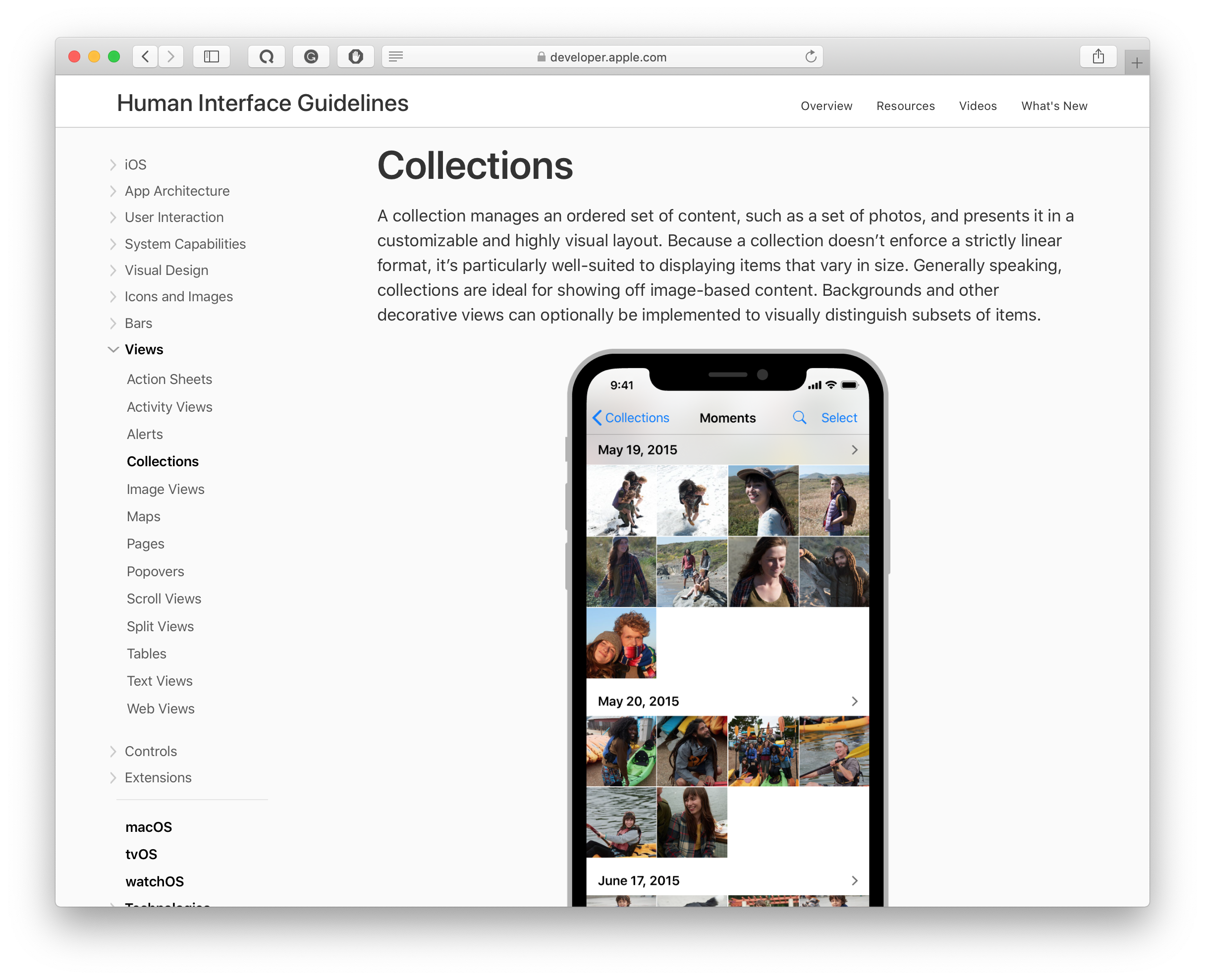 collection views in apple's human interface guidelines