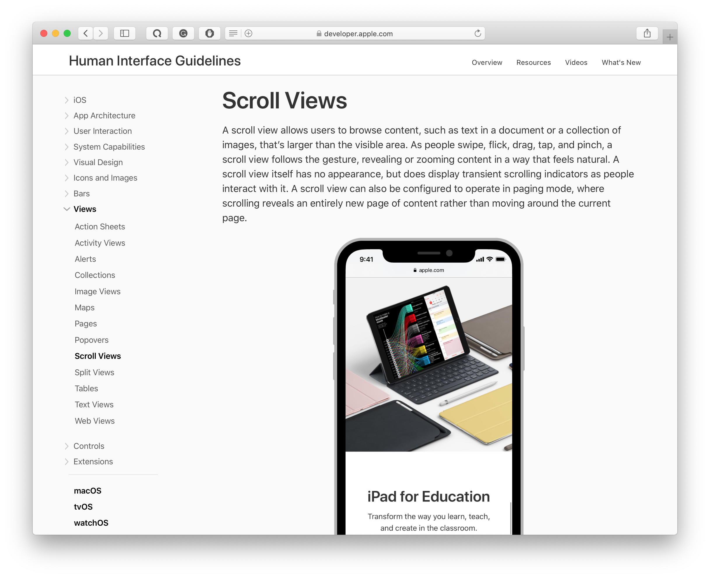 scroll views in apple's human interface guidelines