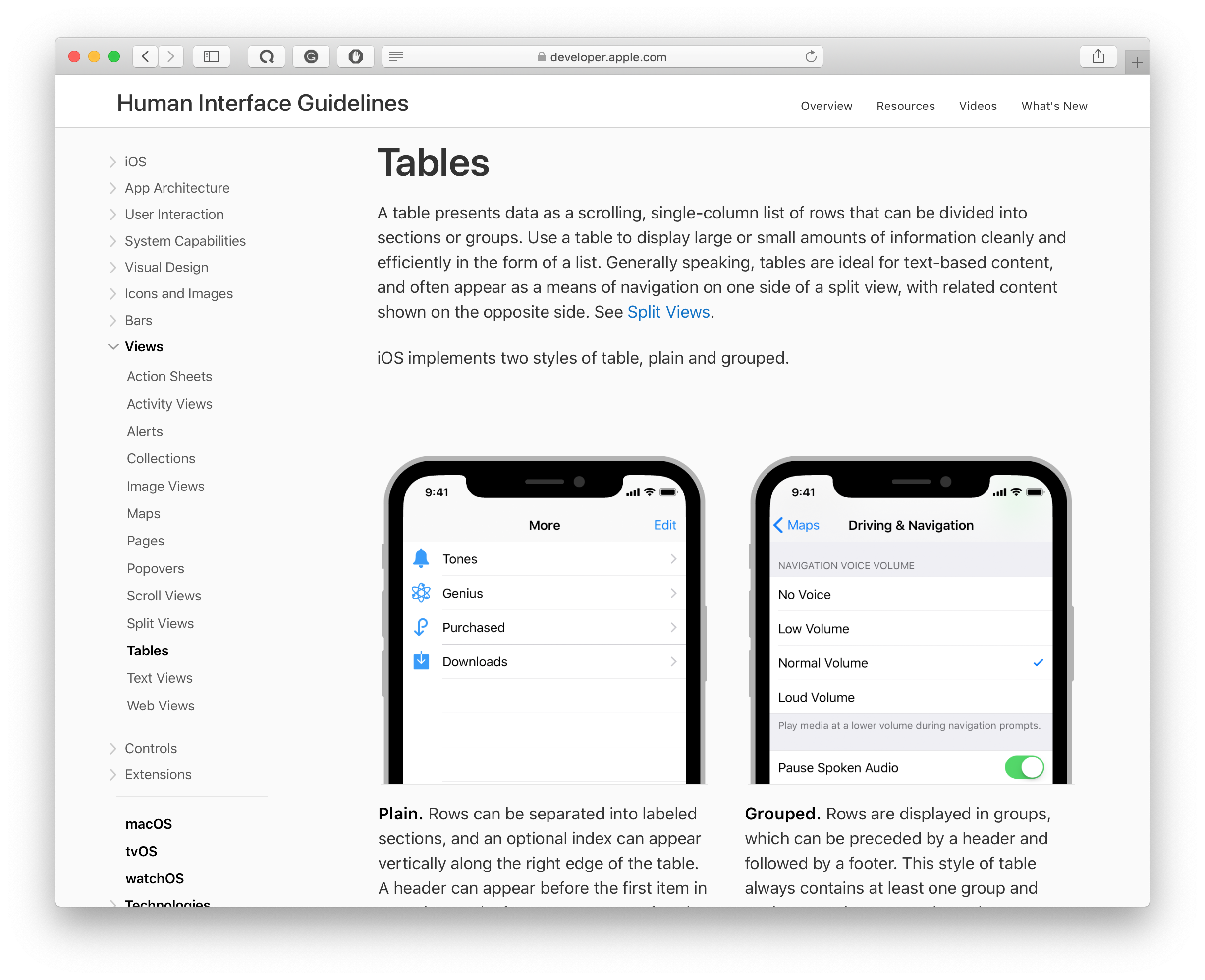tables in apple's human interface guidelines